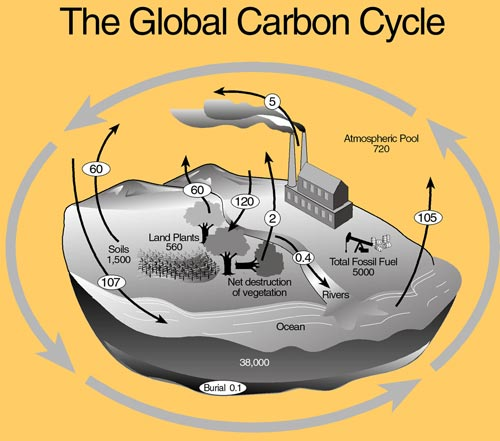 How Far Off Can Carbon Hookup Be